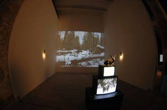 Andrei Monastyrski, Installation THE HARE'S SHADOW, OR ONE HUNDRED YEARS OF BRENTANO